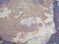 14975103-Беломорские петроглифы