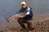Река Кола, семга 12,2 кг