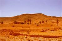 В Сахару