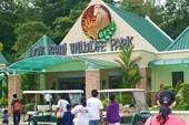 Парк дикой природы Лок Кави