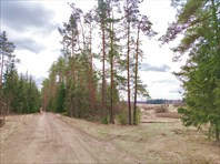 Дорога к мельнице от Большого Поля (западная)