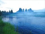 Навели туману
