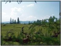 Алтай-2012