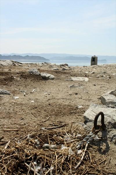 Гнездо чайки на острове с покинутой метеостанцией