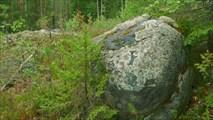Камень и Ёлочка