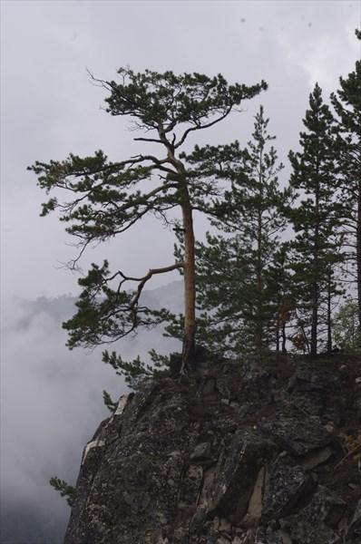 Гора Маркова 2
