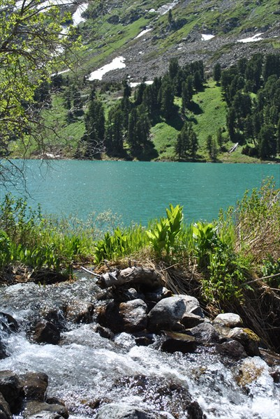 Множество речушек впадают в озеро