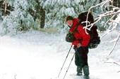 А может, стоило на лыжах?