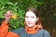 фото с мандарином