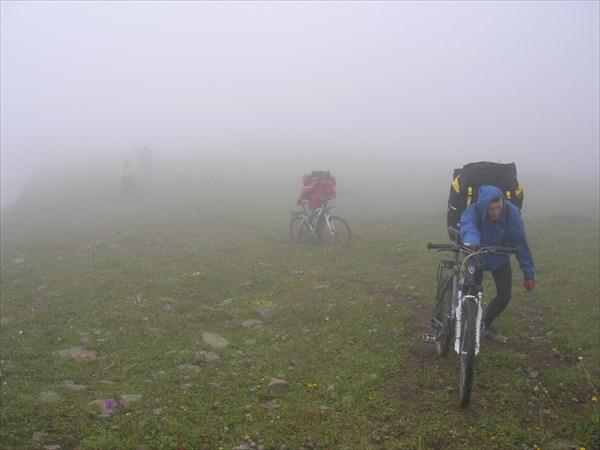 Ежики в тумане
