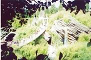 Остров приключений, Диснейленд