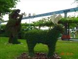 Зеленые скульптуры.