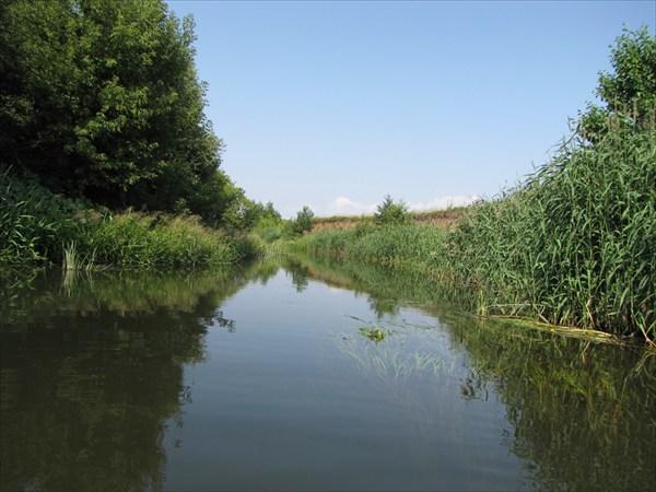 Свободная река