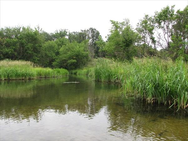 Река Иловай