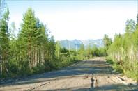 Фото 28. Дорога для ралли