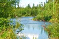 Фото 31. Таежная речка