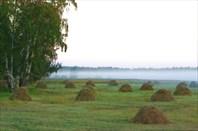 Фото 11. Утро туманное