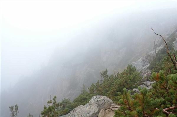 Сгущается туман и видимость резко ухудшается