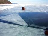 Поля открытого льда
