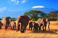 Kenya-Кения
