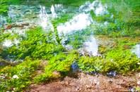 Все, что вы видите на фотографии, находится под водой.