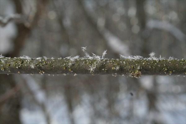 Снег шел из снежинок идеально правильной формы
