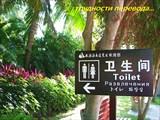 В Китае.