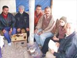 Любопытные сирийцы