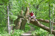Лёня - победитель деревьев-мутантов