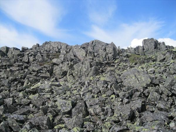 29. Камни на предвершине г. Гумбольдта