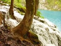 Подкоренной водопад