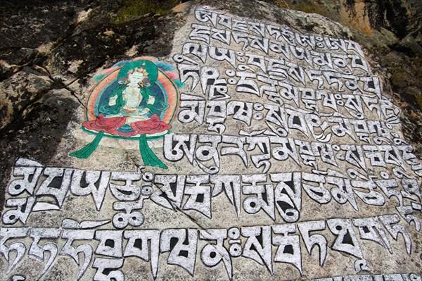 Sherpa Mani