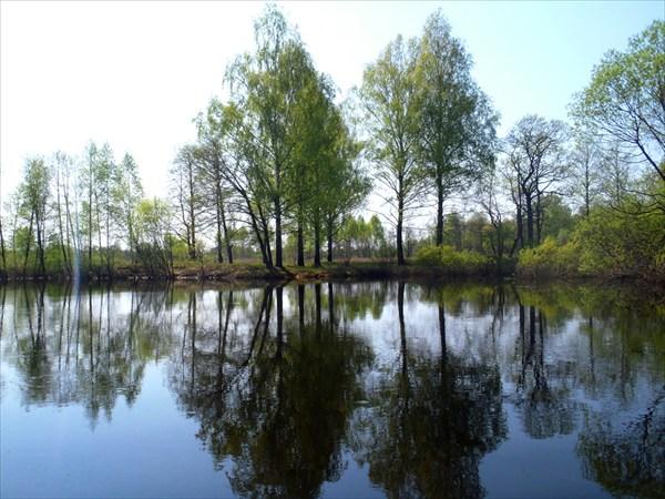 Река Ипуть.