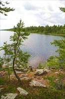 Карелия. Воньга и Белое Море. Лето 2007. (c) Суржикова Катерина