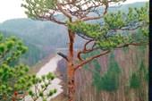 Вид со скалы на Яманташе.