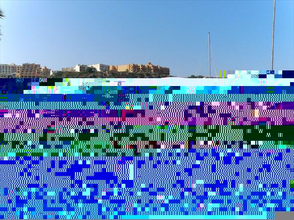 655-Автобус