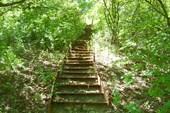 Лестница к кринице