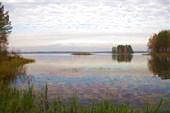 Южный берег Вышневолоцкого водохранилища
