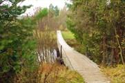 Первый подвесной мостик