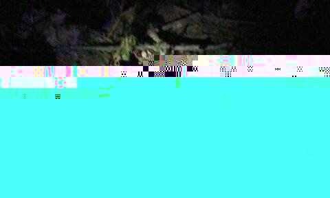 Received_1474141435968966 Часть убитых ведер вытащили наверх