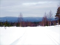 Лыжня RR2009