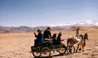 на фото: На телегах к Эвересту