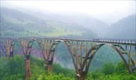 Река Тара (Черногория)