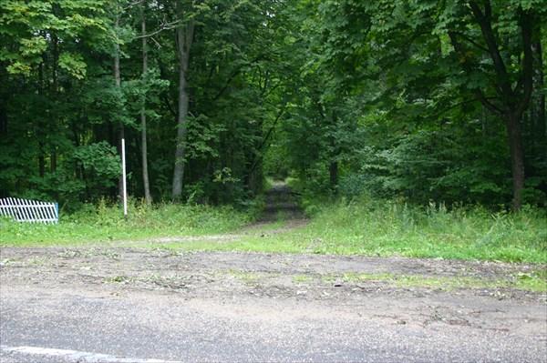 В этих кустах остатки немецкой железной дороги