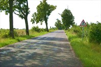 Пешеходный переход среди полей