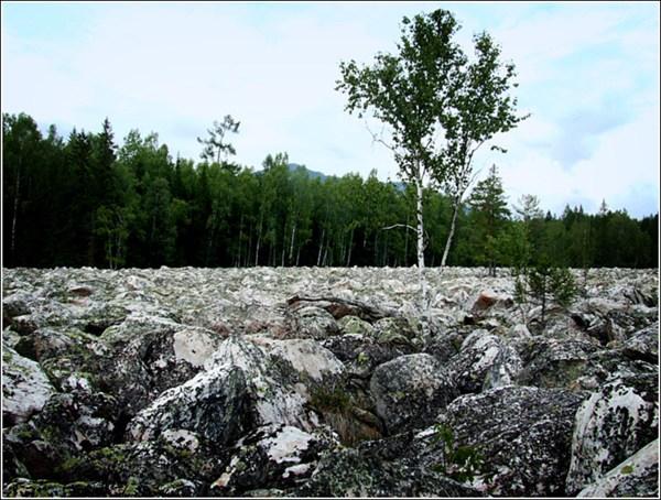на фото: Каменная река