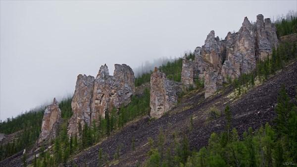 Утренний туман на скалах