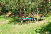 Сосновый бор на реке Восьма