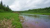 Река Щучья