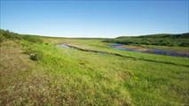 Верховья реки Щучья